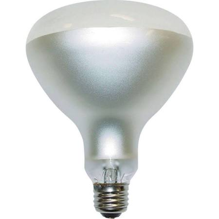 Dodge Packaging Specialties 500watt 120v Pool Bulb
