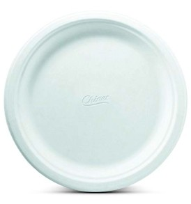 10 Inch Chinet Paper Plate  sc 1 st  Dodge Packaging Specialties & Dodge Packaging Specialties » GREENWAVE SQUARE 6u2033 PLATE